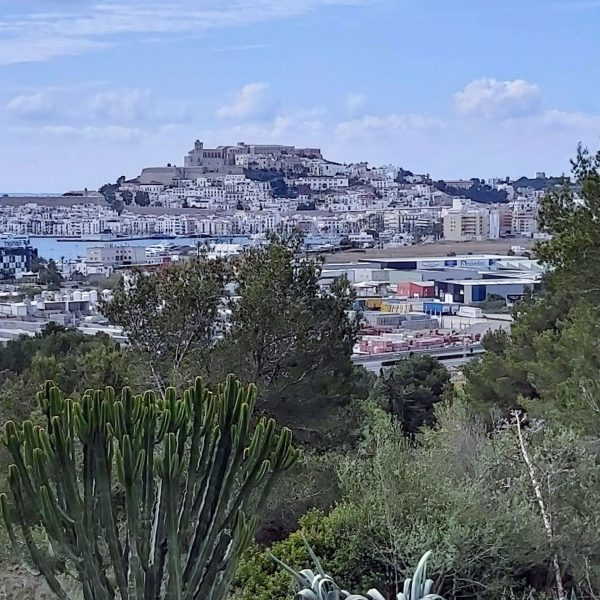 Travel Can Destino Labarta Ibiza Villa Pool 22