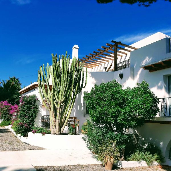 Travel Can Destino Labarta Ibiza Villa Pool 3