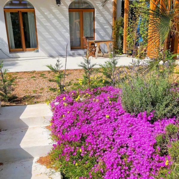 Travel Can Destino Labarta Ibiza Villa Pool 31