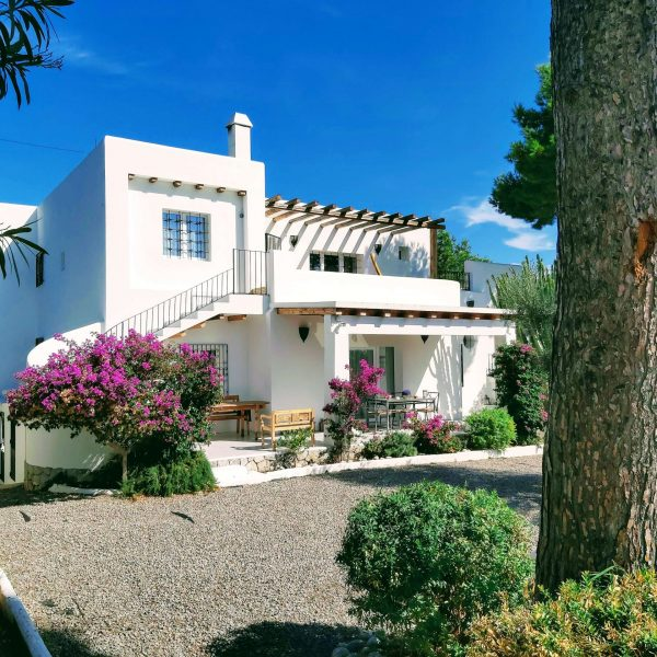 Travel Can Destino Labarta Ibiza Villa Pool 4