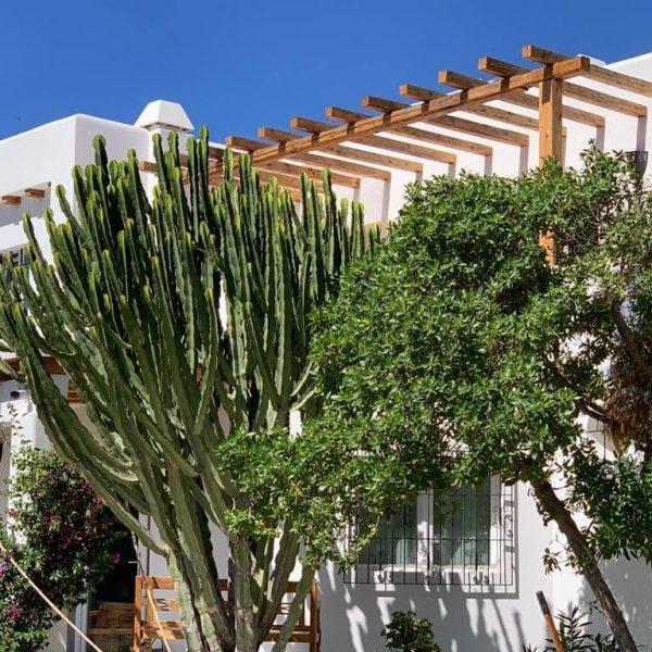 Travel Can Destino Labarta Ibiza Villa Pool 52