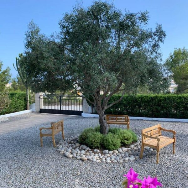 Travel Can Destino Labarta Ibiza Villa Pool 53